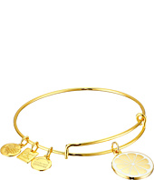 Alex and Ani - Charity by Design Zest for Life II Charm Bangle