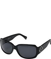 Brighton - Toledo Sunglasses