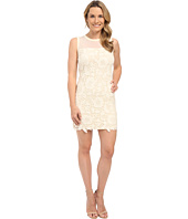 KUT from the Kloth - Illusion Lace Dress