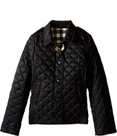 Burberry Kids - Mini Ashurst New Classic Modern Quilted Coat (Little Kids/Big Kids)