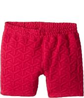 Appaman Kids - Ultra Soft Flint Double Knit Pull-On Shorts (Toddler/Little Kids/Big Kids)