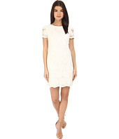 Donna Morgan - Short Sleeve Shift Lace Dress