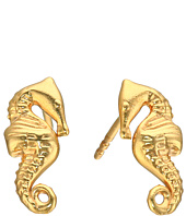 Alex and Ani - Post Earrings Seahorse