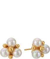 Majorica - TU Y YO Pearl Cluster Gold Stud Earrings