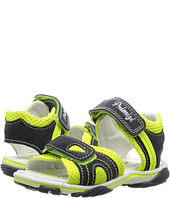 Primigi Kids - PSS 7082 (Toddler)
