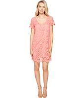 BB Dakota - Rene V-Neck Lace Shift Dress