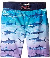 Appaman Kids - Blacktip Shark Swim Trunks (Toddler/Little Kids/Big Kids)