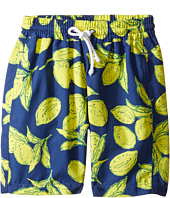 Oscar de la Renta Childrenswear - Painted Lemons Classic Swim Shorts (Toddler/Little Kids/Big Kids)