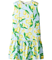 Oscar de la Renta Childrenswear - Painted Lemons Cotton Drop Waist Dress (Toddler/Little Kids/Big Kids)