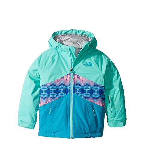 The North Face Kids Brianna Insulated Jacket (Little Kids/Big Kids)