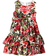 Dolce & Gabbana Kids - Floral Poplin Dress (Toddler/Little Kids)