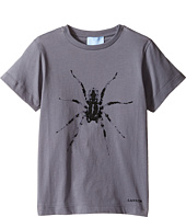 Lanvin Kids - Short Sleeve T-Shirt w/ Spider Design On Front (Little Kids/Big Kids)