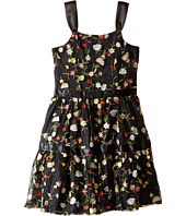 Nanette Lepore Kids - Embroidered Mesh Dress (Little Kids/Big Kids)