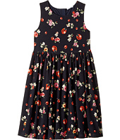 Dolce & Gabbana Kids - Back To School Floral Dress (Big Kids)